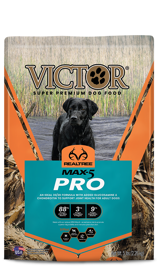 victor-realtree-max5-pro
